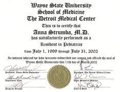 Wayne State University Residency (2002)
